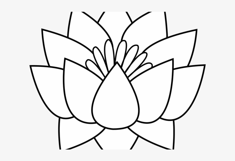 Lotus Tattoos Clipart Flower Border Lotus Flowers Clipart