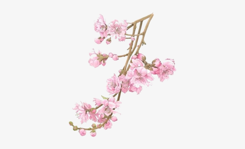 When The Peach Tree Blossomed We Trimmed The Branches - Flower Tree Branch Png, transparent png #3887428