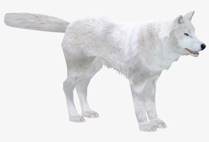 Arctic Wolf - Zoo Tycoon 2 - Free Transparent PNG Download