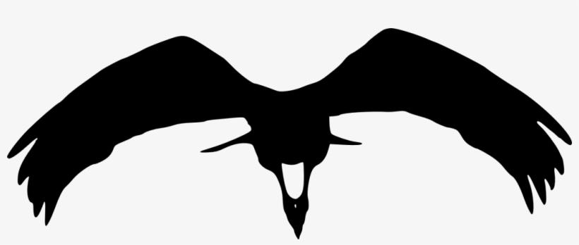 Png File Size - Transparent Eagle Bird Silhouette, transparent png #392732