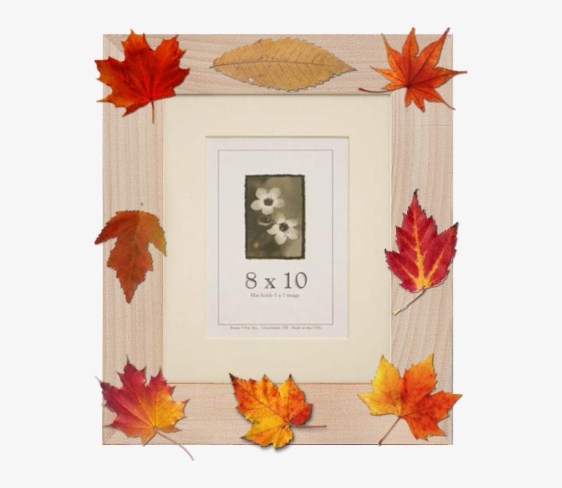 Framing Fall Foliage - 22x28 Colori Medium Picture Frame Yellow, transparent png #394699