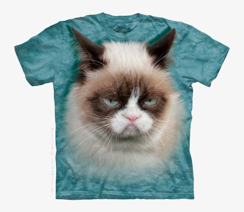 Cutie Pie Kitten, Striped Cat Face, Grumpy Cat - Mountain Grumpy Cat, transparent png #3918186