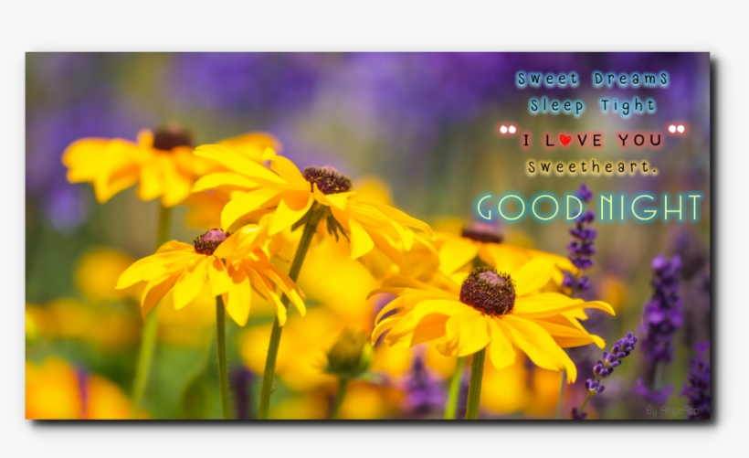 0 - - Quotes Images For Happy Father's Day With Nature, transparent png #3919983