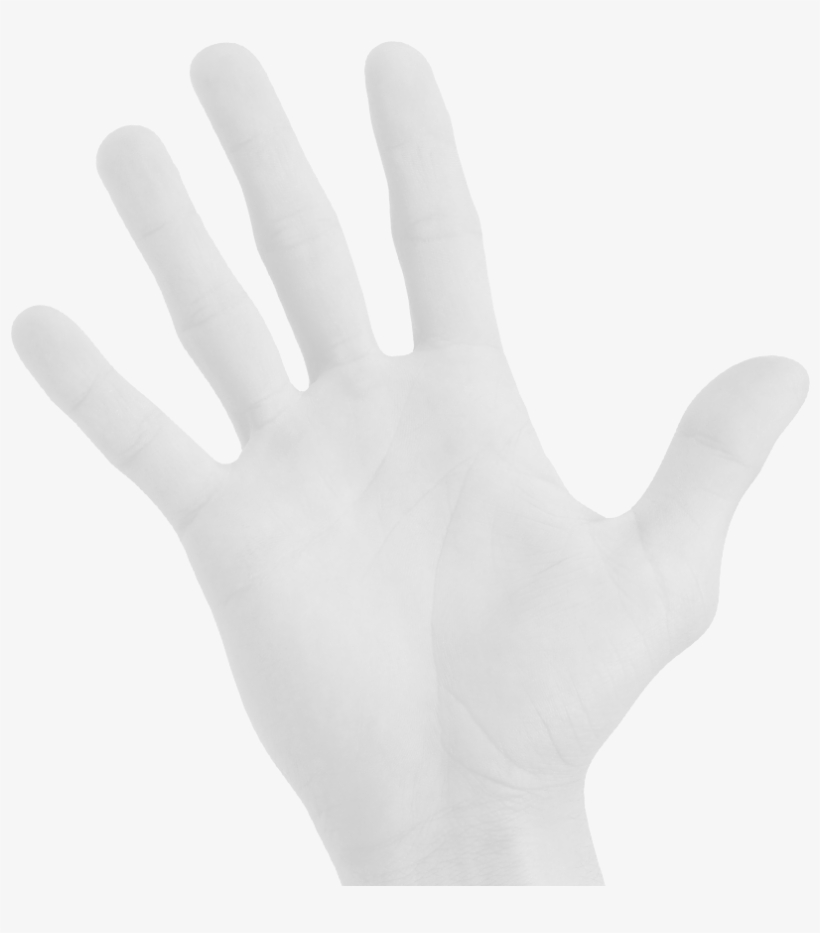 Hand Therapy Inc-bellingham, transparent png #3974762