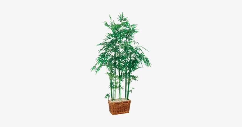 Silk Bamboo Tree In Rectangle Basket - Nearly Natural 5294 Bamboo Silk Tree, transparent png #3993646