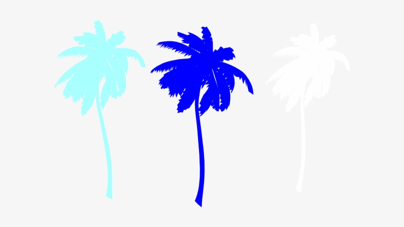 Vector Palm Trees Svg Clip Arts 600 X 381 Px, transparent png #41574
