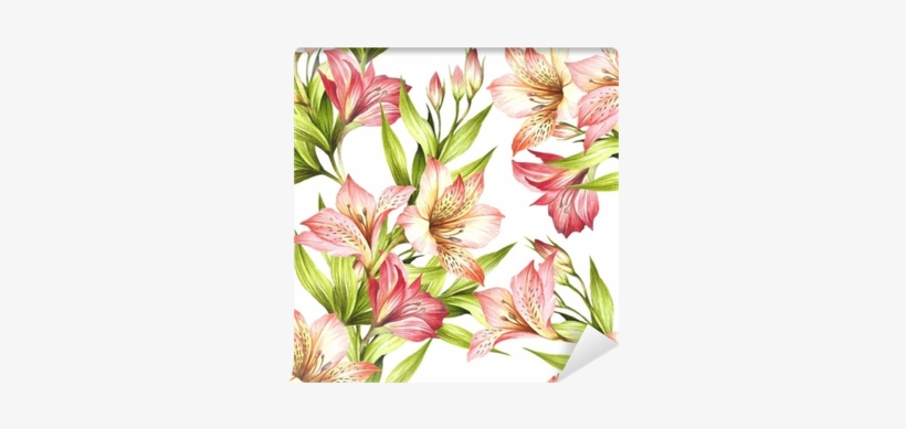 Alstroemeria Drawing Watercolor - Watercolor Painting, transparent png #41723