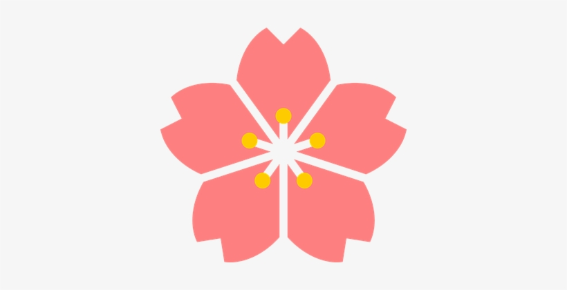 Cherry Blossom Flower Japan Spring Cherry - Cherry Blossom Flower Transparent, transparent png #42278