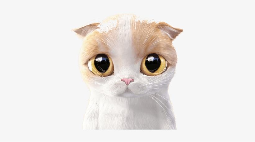 Kitten Phone Wallpapers Cute Cartoon Cat Free Transparent Png