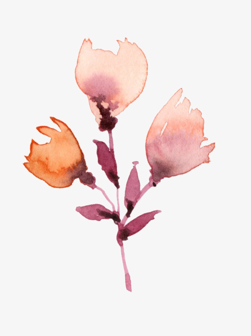 Plant Watercolor Painting Flower Drawing - Watercolor Painting, transparent png #44656