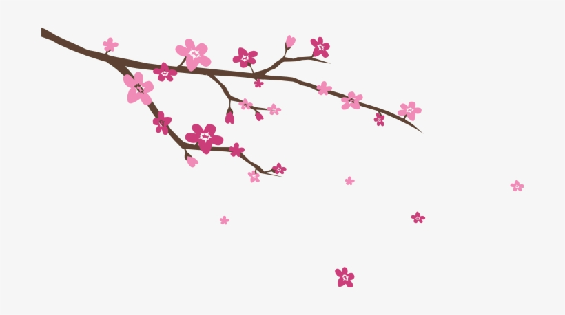 Image Blossoms Wall Decal Stickersstickers - Cherry Blossom Branch Svg, transparent png #45426