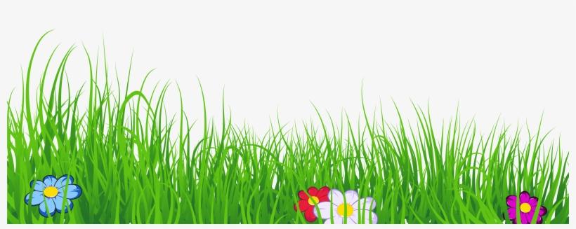 Ground Clipart Clear Background Grass - Grass Clipart Transparent Background, transparent png #47141