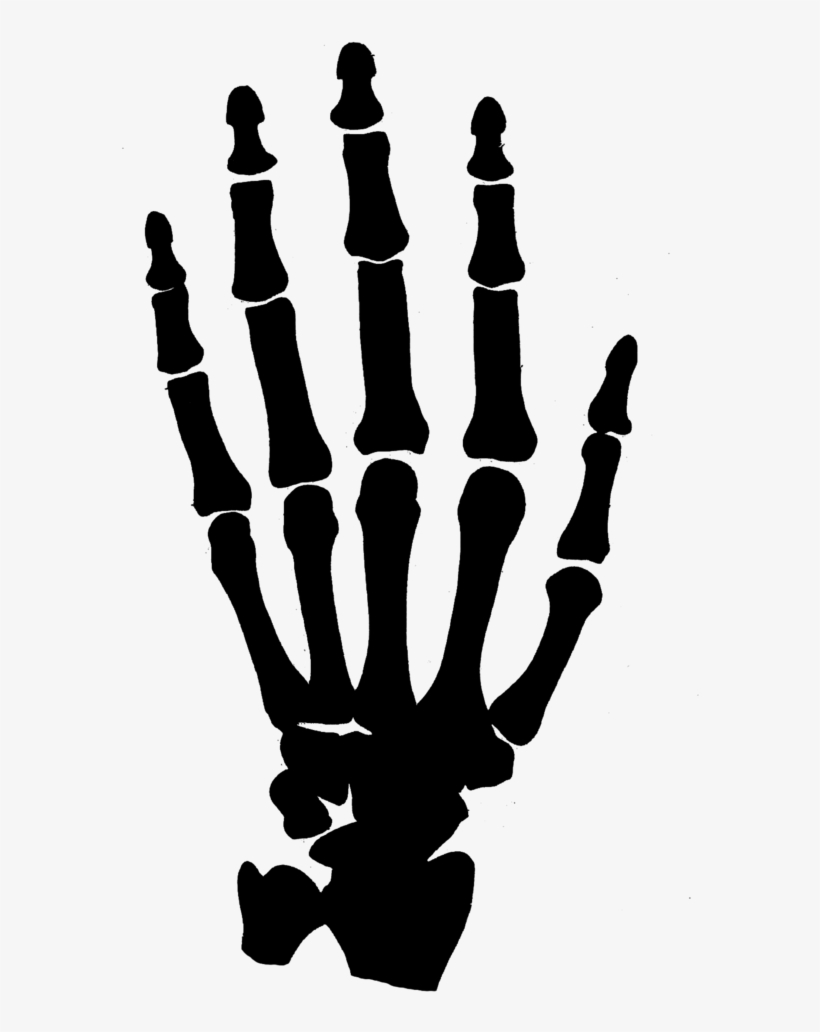 Hand Clipart Black And White Png - Skeleton Hand No Background, transparent png #47403