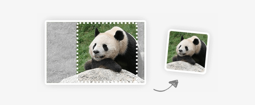 Smart Image Resize Api - Tiny Jpg, transparent png #47519
