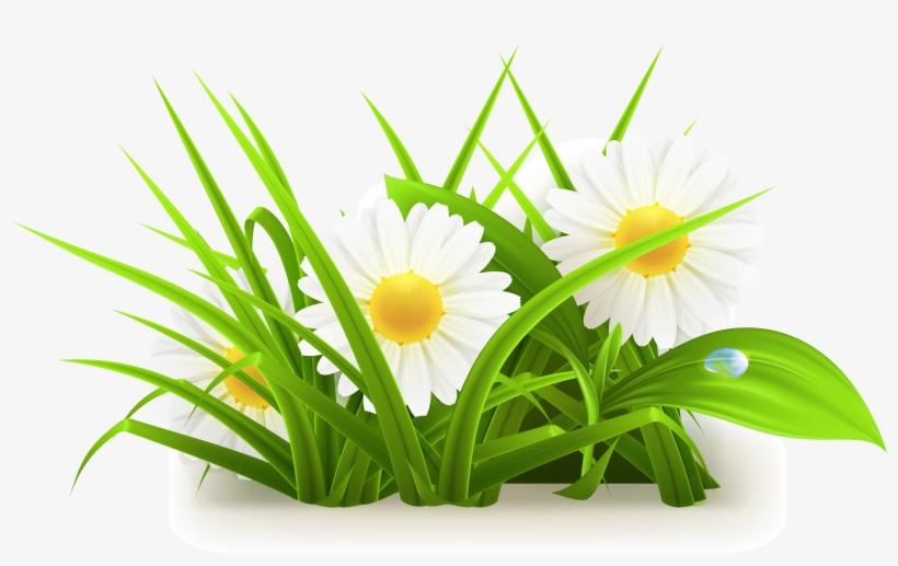 Flowers Grass Vector Grass Vector 3055*1776 - Flower Plant Vector Png, transparent png #47921