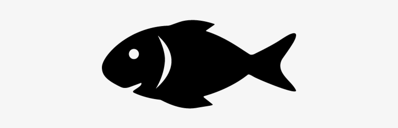 Download Raw Fish Vector Fish Svg Free Free Transparent Png Download Pngkey
