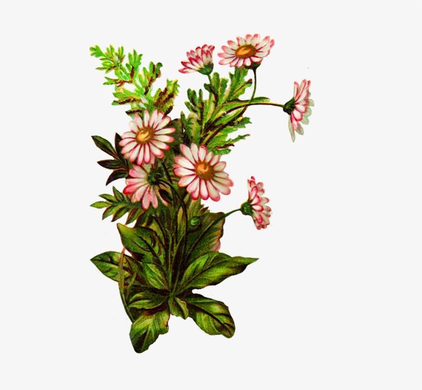 Flower Bouquet Decoration - Pink Flowers Borders And Frames, transparent png #4007926