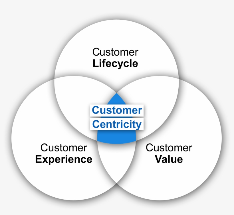 Customer Centricity Model - Put Your Customer First, transparent png #4041506