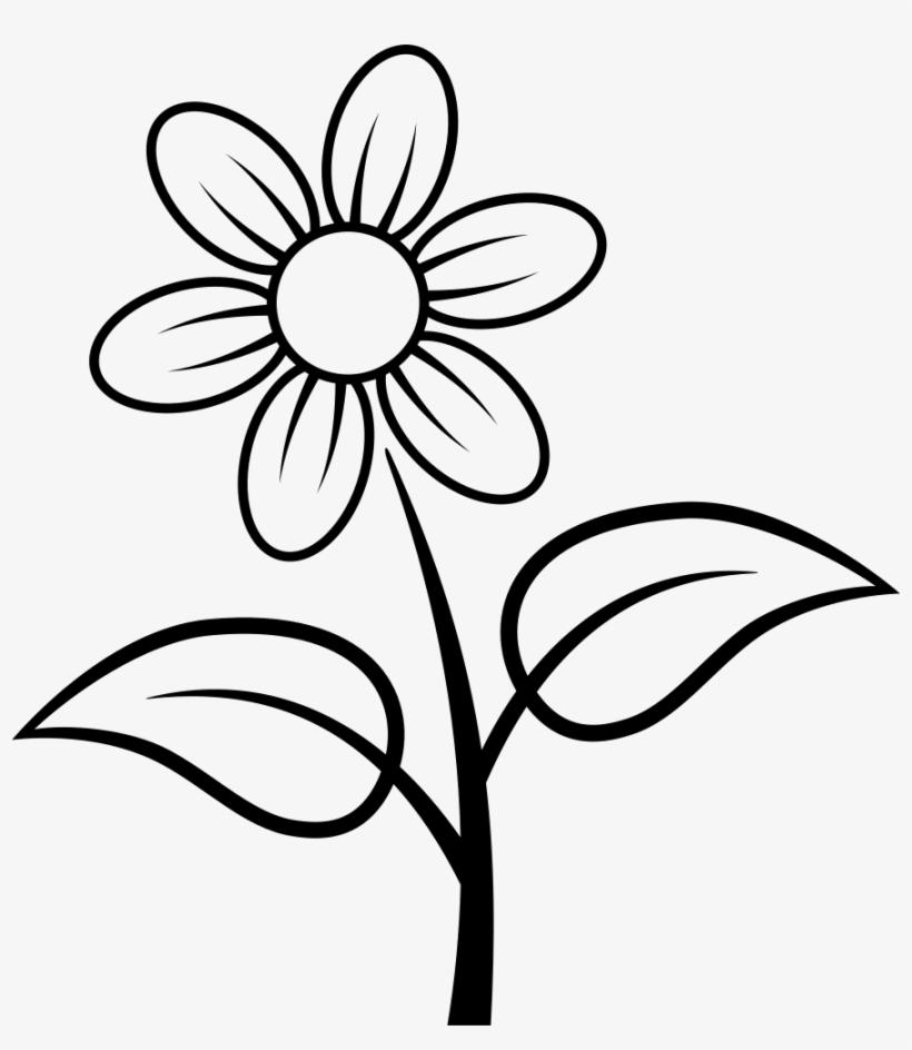 Coloriage Fleur Hawai.Flower Comments Fleur Coloriage Free Transparent Png Download