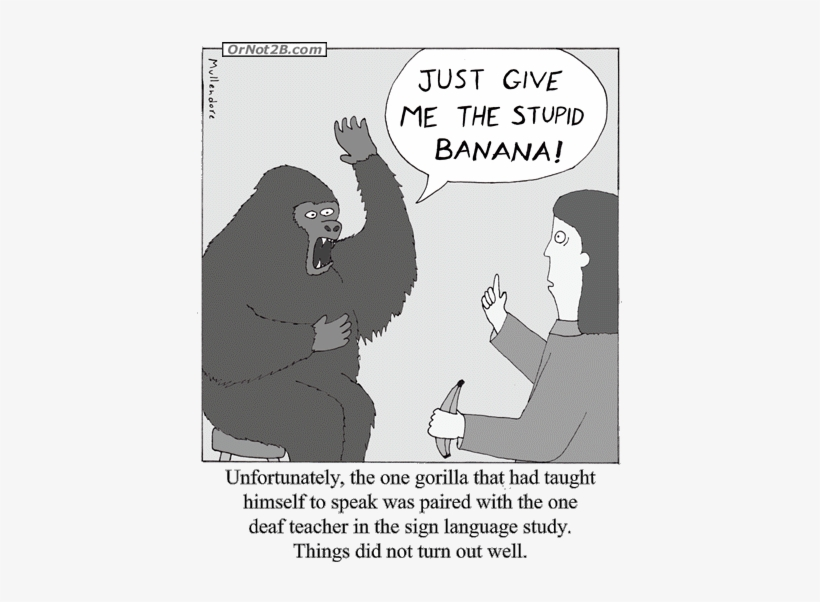 Previous Comic, Gorilla Sign Language - Gorilla Sign Language Greeting Card, transparent png #4050456