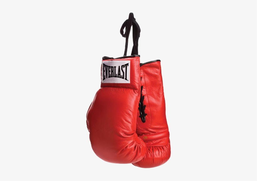 Discover Ideas About Boxing Training Gloves - Everlast Boxing Gloves, transparent png #4056980