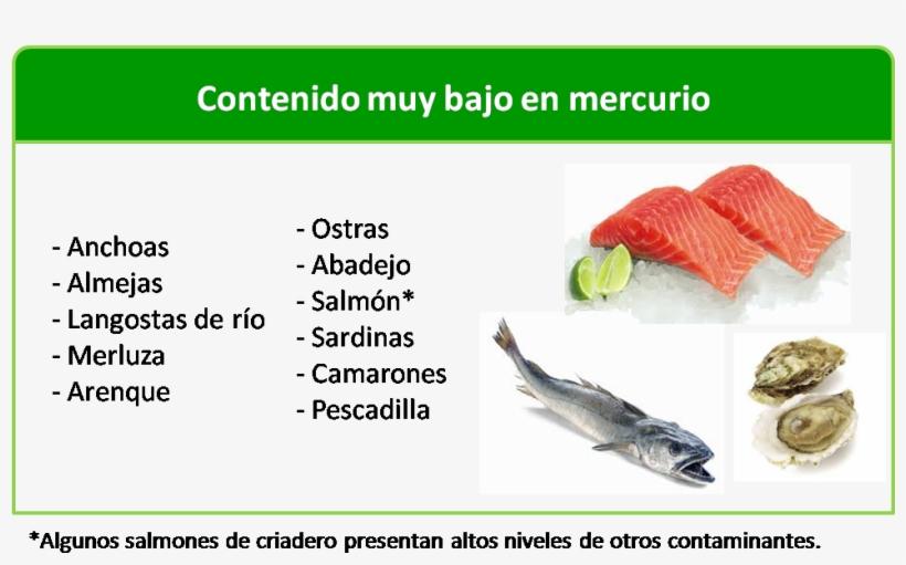 Durante El Embarazo, ¿qué Tipo De Pescado Se Puede - Puedo Comer Durante La Lactancia, transparent png #4067546