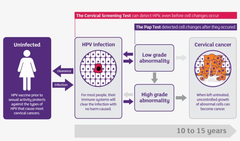 "Progression Of Hpv To Cervical Cancer - Cosco Ada Restroom Signs, Men/women, 6"" X 9"" - 2 Pack, transparent png #4081578"
