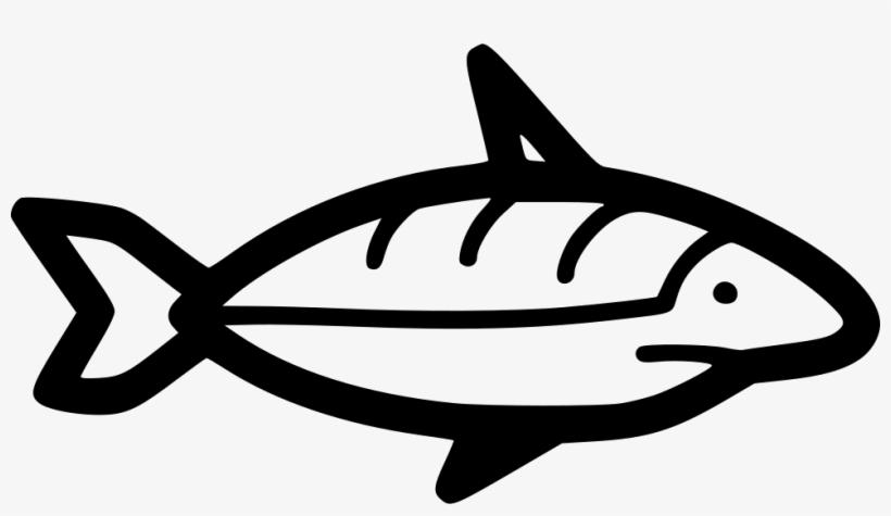 Png File - Shark, transparent png #4097843