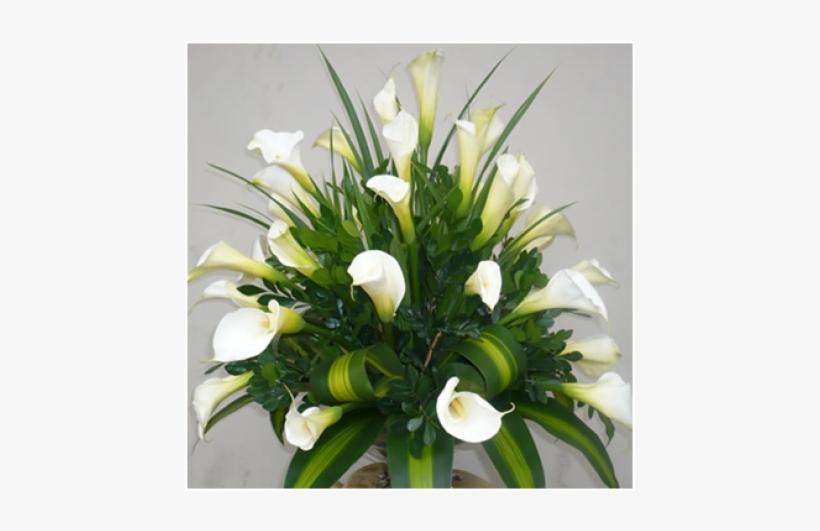 Floral Alma Blanca Arreglos Florales Con Calas Free