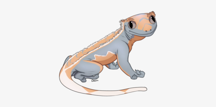 Giant Gecko Lizard Coloring Pages - Download & Print Online ... | 407x820