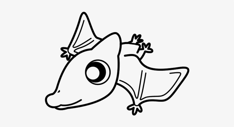 Dinosaurios Para Dibujar Faciles Para Bebes Terodactilo Bebe