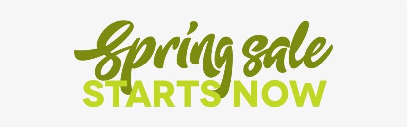 Spring Sale Starts Now - Instagram, transparent png #4203826