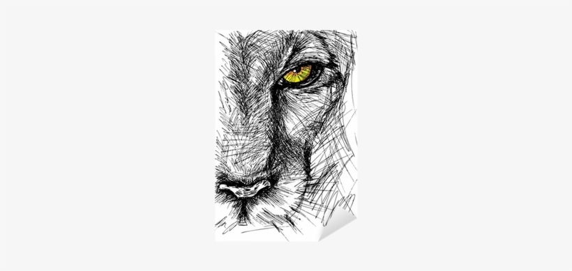 Hand Drawn Sketch Of A Lion Looking Intently At The - Lion Drawing, transparent png #4210976