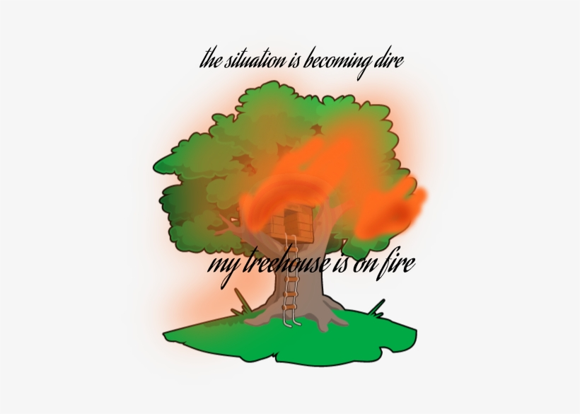 Forest Lyrics Drawing - Magic Tree House Tree, transparent png #4270246