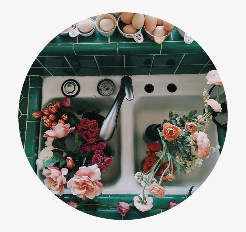 Aesthetic Flowers Flower Sink Tumblr Bts Tumblr Jungkoo - La Casa De Las Flores, transparent png #4276726