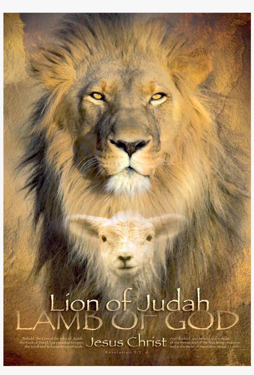 Lion of judah wall art lion of judah lamb of god transparent png