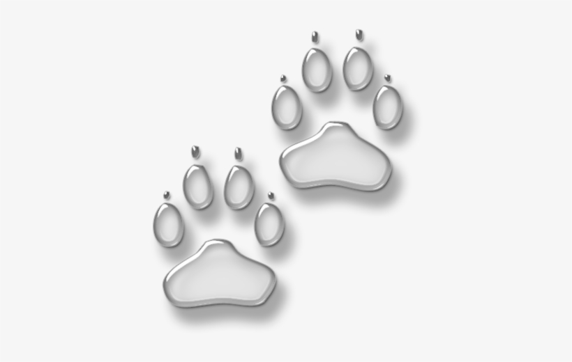 White Dog Paw Print Png For Kids White Paw Print Transparent Background Free Transparent Png Download Pngkey We only accept high quality images, minimum 400x400 pixels. white dog paw print png for kids