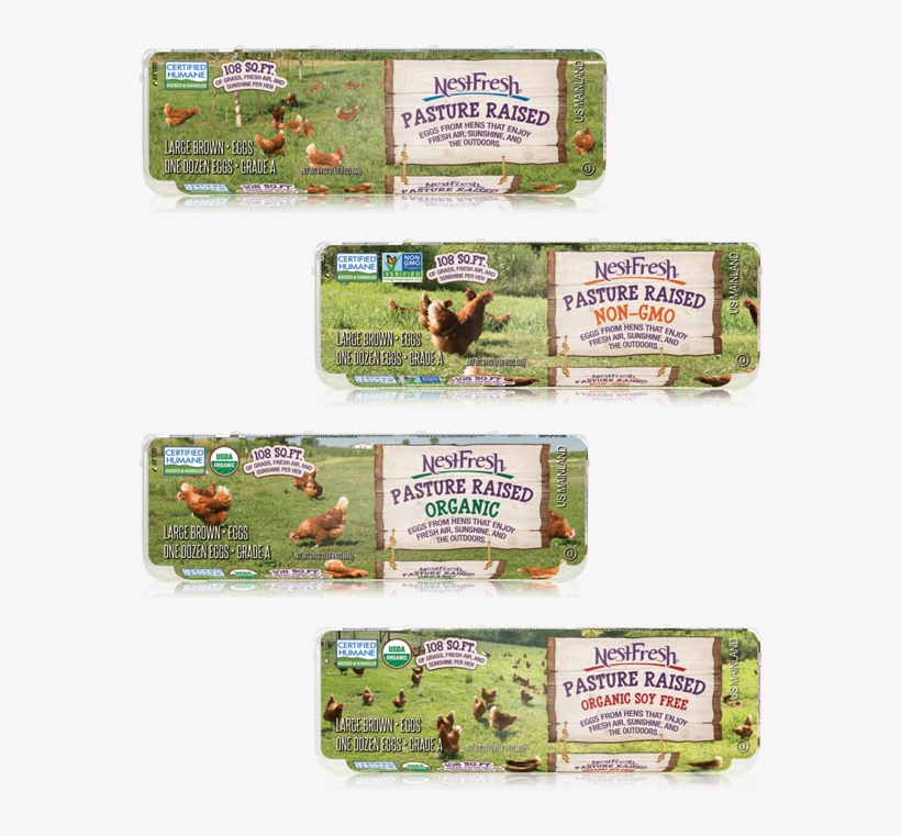 We Strive To Be The Leader In Humane, Sustainable Eggs - Paper Product, transparent png #4287781