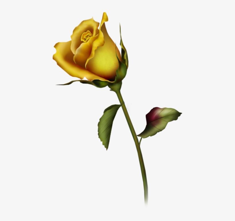 Yellow Rose Bud Clip Art - Rose Bud Tattoo Design, transparent png #431935