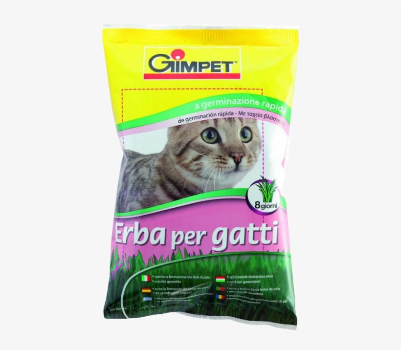 Hierba Para Gatos, 100 Grs - Gimpet Hy Gras - Cat Grass 150g, transparent png #4300065