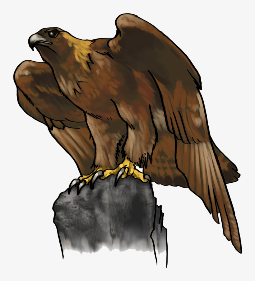 Eagle Png Photo Background - Clip Art Golden Eagle, transparent png #4337002