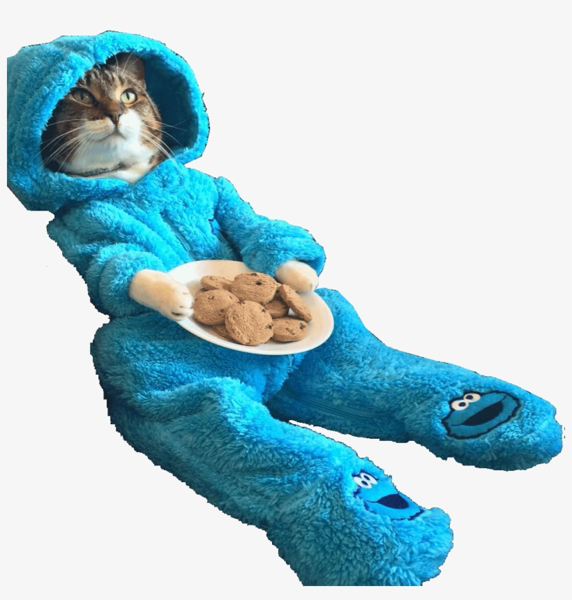Animalcat Wearing Cookie Monster Onesie - You Re Finally Home Alone, transparent png #4345519