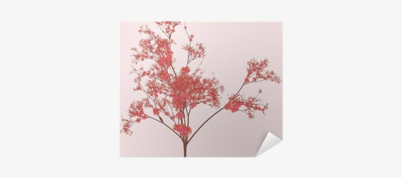 Cherry Blossom Tree, transparent png #4353360