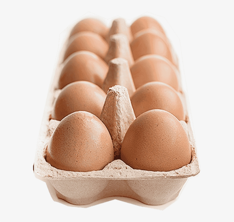 Egg Tray - Egg Carton, transparent png #4375739
