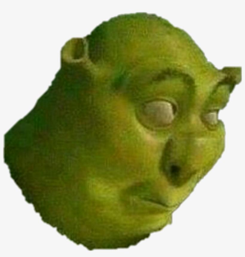 Shrek Sticker Shrek Meme Sticker Free Transparent Png Download Pngkey
