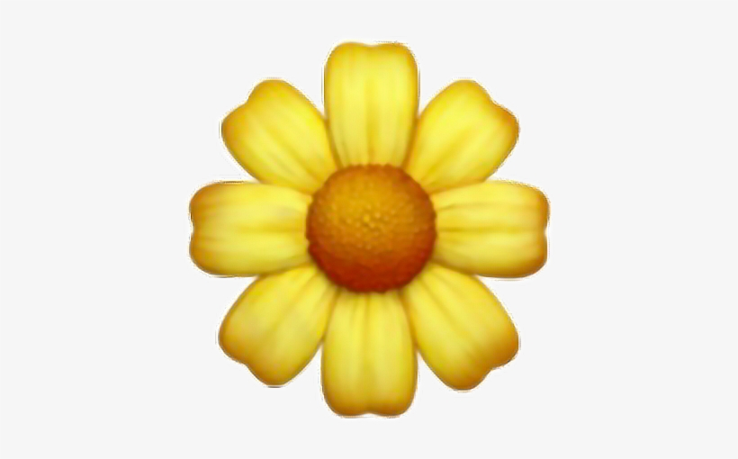 Daisy Yellow Flower Cute Tumblr Overlay Interesting Flower Emoji