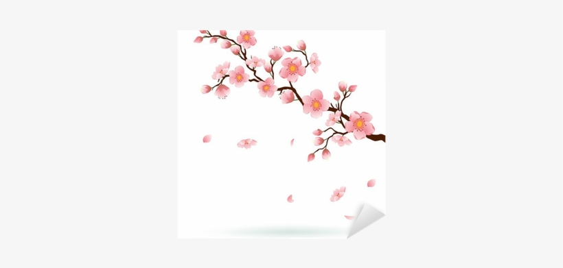 Cherry Blossom With Falling Petals - Clip Art Cherry Blossom Tree, transparent png #4416749