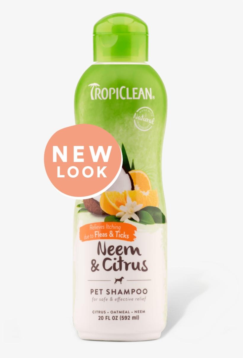 Dog Supplies Tropiclean Shampooneemcitrus - Tropiclean Medicated Oatmeal & Tea Tree Shampoo, transparent png #4445207