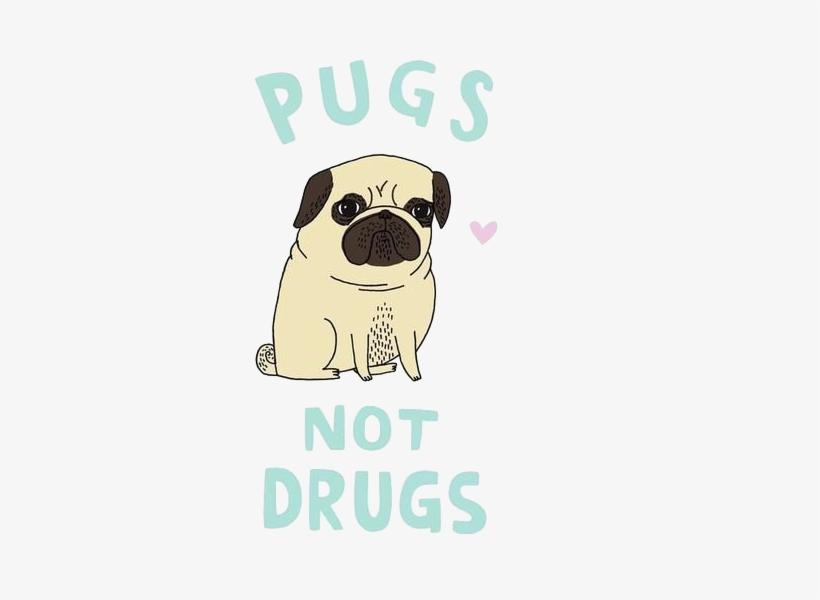 Transparent Pug - Pugs Not Drugs Cute Ladies Pug Dog T-shirt, transparent png #450466