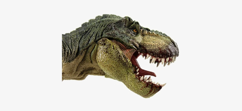T Rex Png File T Rex Head Side View Free Transparent Png Download Pngkey